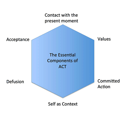 Acceptance and commitment therapy online training
